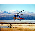 memorytuesday newzealand poulets 2008 helicopter transportation