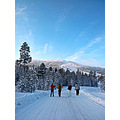 Christian, Karl, Emil and Victor...lets go skiing.  Im suprised over my Samsung G2 camera, the ...