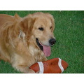 kobi football dog