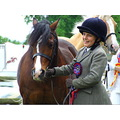 pony horse show competition winner smile girl happy pride