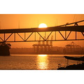 sunrise auckland harbour bridge