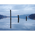 reflectionthursday otago harbour pylons dunedin littleollie