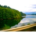 mayfieldlake mayfielddam lewiscounty washingtonstate