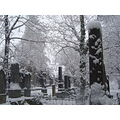 winter cementery snow