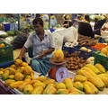 Maldives Local fruits Market