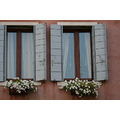 flower window venice