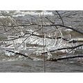 week 3 cluster icicles naugatuck river