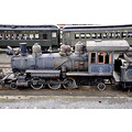 steamtown scranton pennsylvania railroad train flowers rust