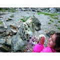 litle girl paying leopard leo snow