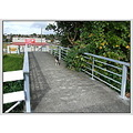 footbridge bridge handrail concrete cement dog animal pet