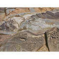pbeachfph rocks beach ocean pebbles landforms tafoni