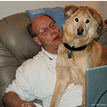 stlouis missouri us usa animal dog Roxy 2007 WJH laptop