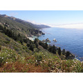 Big Sur Hwy 1 Ventana wilderness