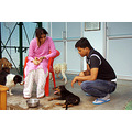 zespook lucknow india animals dogs