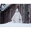 White Snow Virgin Mercy Mary Marry