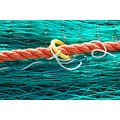 Fishing net green