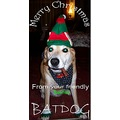 BATDOG superhero dog hero xmas christmas