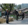 Saw this man going about his day on our way to a remote area of The Great Wall of China. I love i...