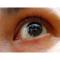 eye macro poulets 2007 reflectionthursday