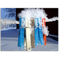 winter snow line clothes peg