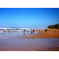 Members of our Trafalgar Conservation Group on the beach in the Trafalgar Marine Reserve on a gui...