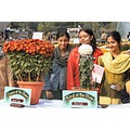flowers flower show girls Lucknow India