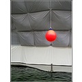 red ball water tent animals zoo