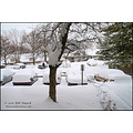 stlouis missouri us usa winter snow cars 012011