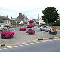 ireland carlow architecture townscape flowers