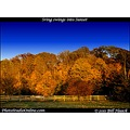 stlouis missouri fall season colors change togethernessFriday funfriday 110111