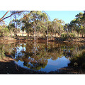 reflectionthursday water hole perth hills littleollie
