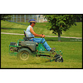 stlouis missouri us usa animal people lawnmower grass tree portrait 2007