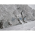 12.21.12 :-))