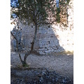 history albania summer holiday stones nature butrint nice view fun time
