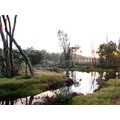 reflectionthursday foggy water perth hills littleollie
