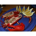 Meal Norway Lobster