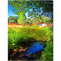 summer pool water landscape country