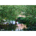 Old wooden bridge water architectur trees nature