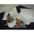 Rika's best friend Snoopy. A 2 little toys, actually, 4 little toys from our Kim