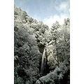 Waterfall of Genfudoh in Japan my friend took it winter