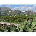 Alora white village castle hills river valley oranges home Andalucia Spain