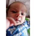 My daughter, born just two weeks ago: Matilda. The very resaon I don�t have so much time for phot...