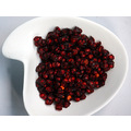 Five Flavour Berries  五味子