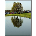 stlouis missouri us usa plant tree water mirror 2007