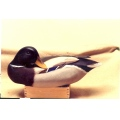 My first artist job was painting pretty hand carved wooden decoys.
