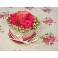 ROSES ROSETABLE RED PINK WHITE