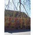 spring oldtown leaves tree