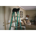 Hmm...household tool doubles as cat entertainment!  I have been very busy painting the family roo...