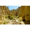 The claycliffs not far from Omarama, New Zealand