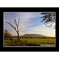Landscape Sunset Tree Pendle Spideyj